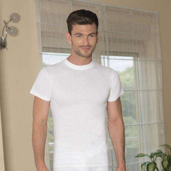Wholesale Men Collection, Short-sleeve cotton t-shirt